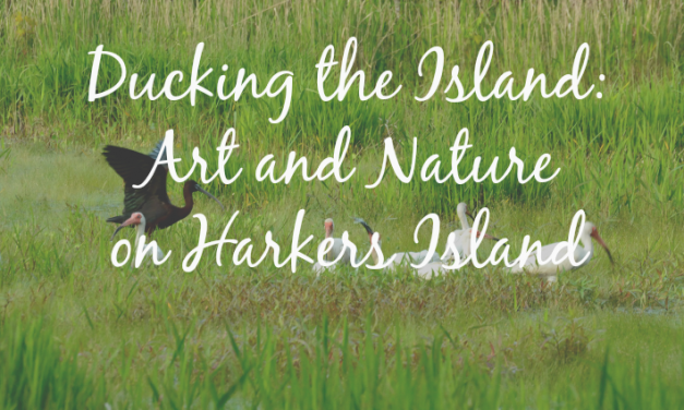 Ducking the Island: Art and Nature on Harkers Island, NC
