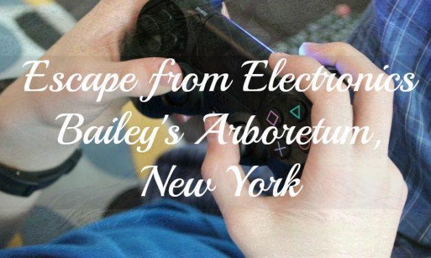 Escape from Electronics: Long Island, NY