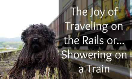 Showering on a Train: Amtrak Travel Tips
