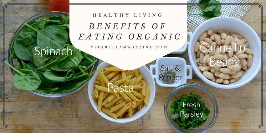 Organic Foods: Remedy for Unwanted Body Chemicals