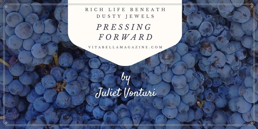 Pressing Forward [an Essay: Rich Life Beneath Dusty Jewels]