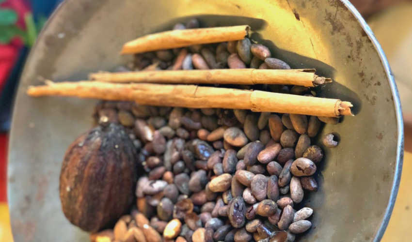 Chocolate on the streets of Oaxaca: A Travel Experience